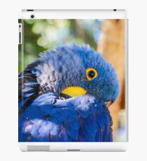 Blue Macaw iPad Case/Skin