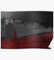Tower of London Poppy Rememberance  Poster