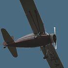 Plane & Simple - Fairchild 24 VH-AZL by muz2142