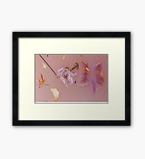 Harry Styles' Pink Floral Pattern Framed Print
