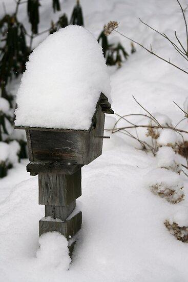 snowed in by Allison Millis