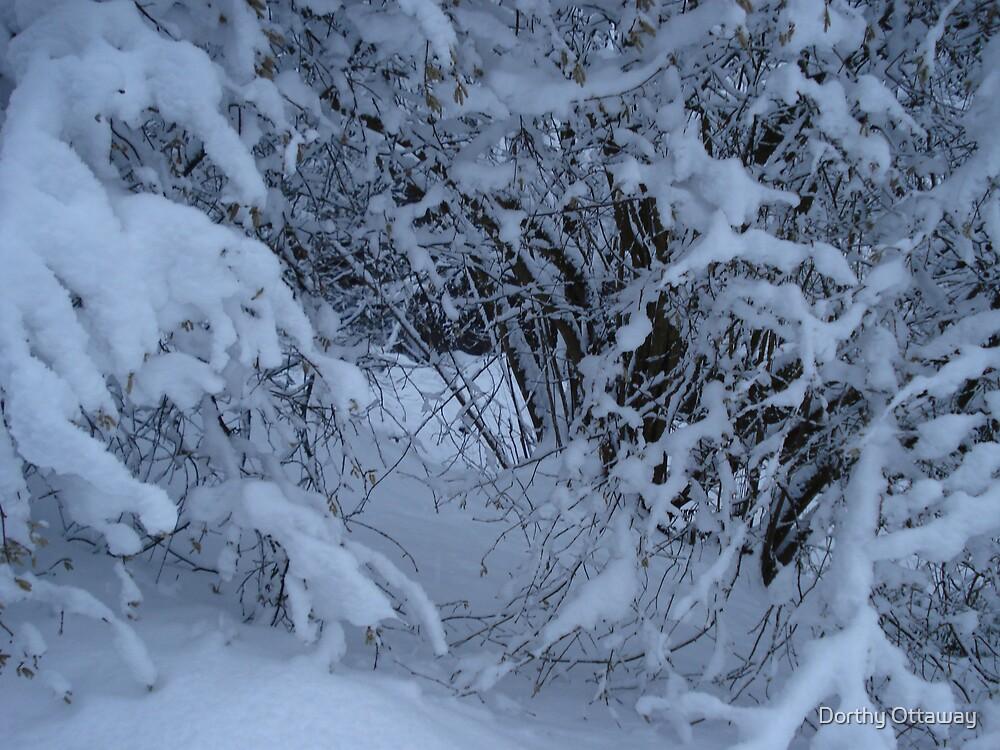 Snow by Dorthy Ottaway