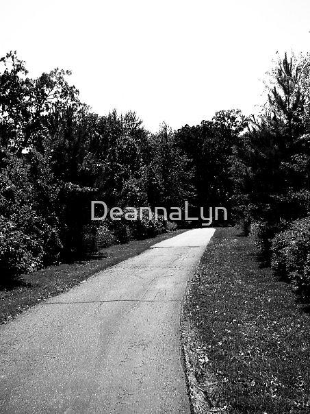 Path by DeannaLyn