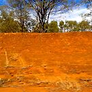 Red Clay Embankment in the Wilderness by MardiGCalero