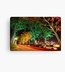 Melodies of Lights Canvas Print