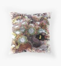 The Atlas Of Dreams - Color Plate 75 Floor Pillow