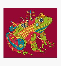 Frog, from the AlphaPod collection Photographic Print