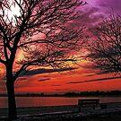 Sunset over South Boston by LudaNayvelt