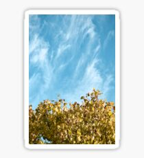 Fall Leaves and Blue Sky Sticker