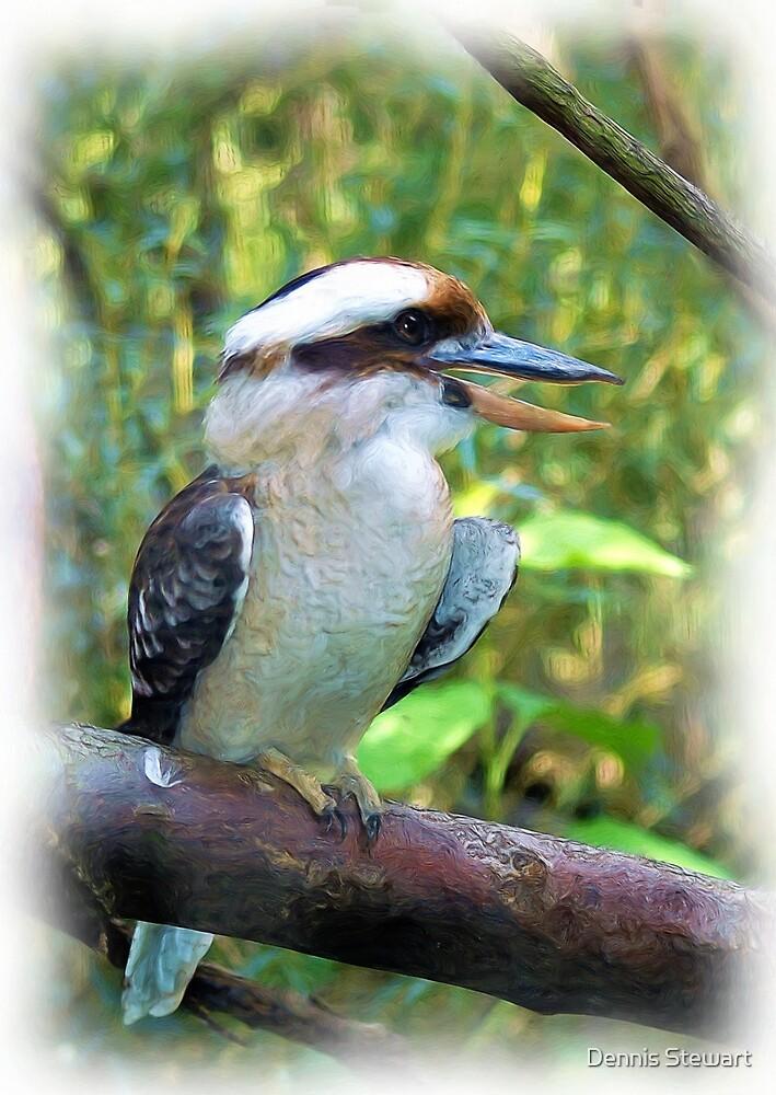 Kookaburra by Dennis Stewart