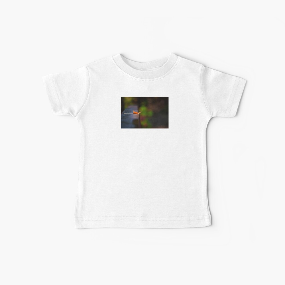 resting place Baby T-Shirt