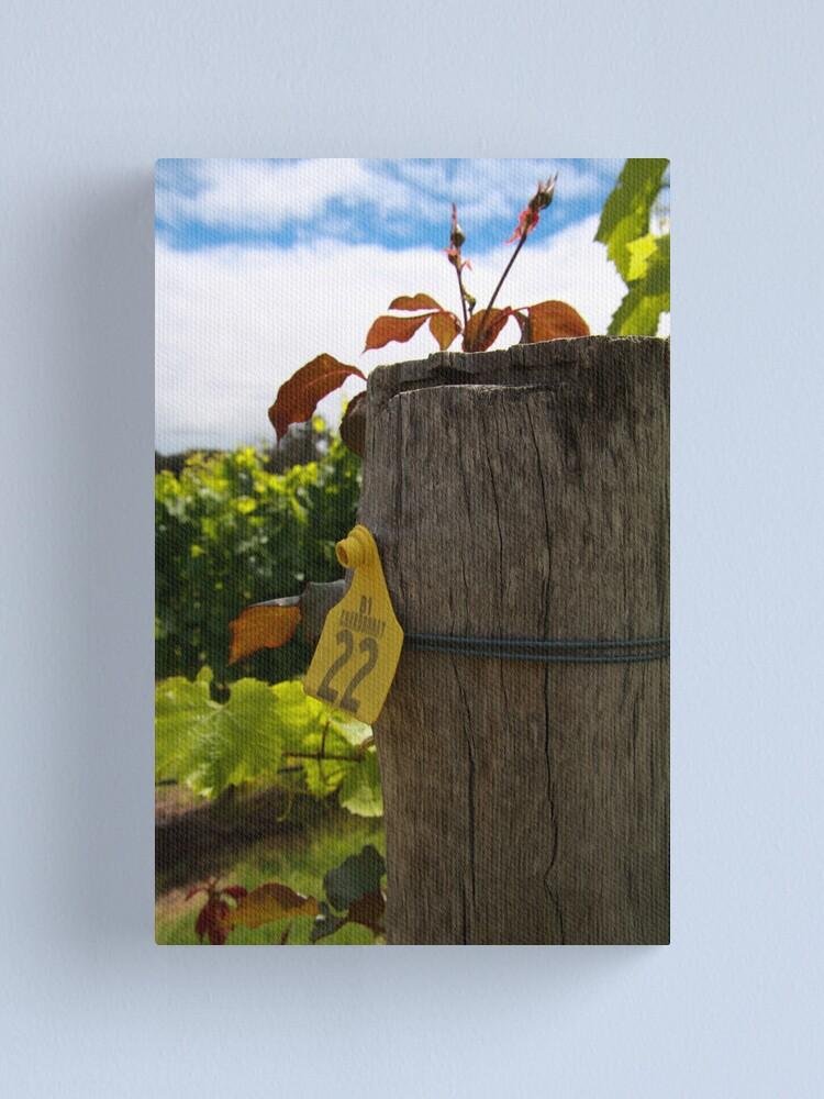Alternate view of Chardonnay  Canvas Print
