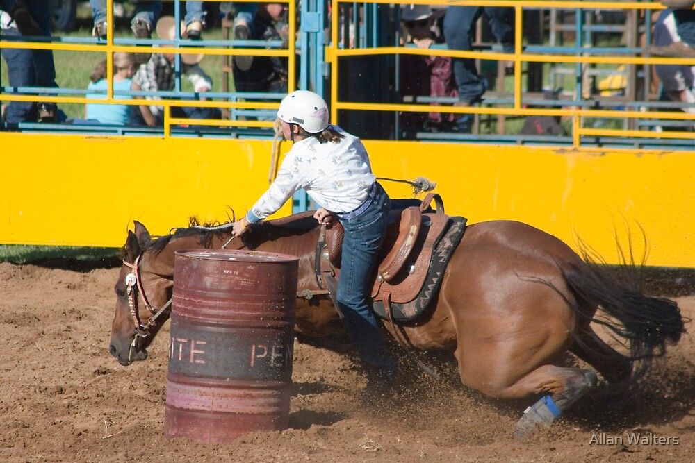 Rodeo Rider by Allan Walters