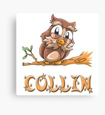 Collin Owl Canvas Print