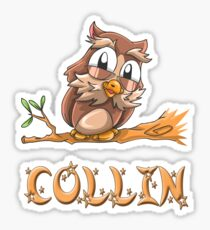 Collin Owl Sticker