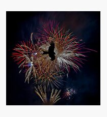 Fireworks show with silhouette of a flying falcon Photographic Print