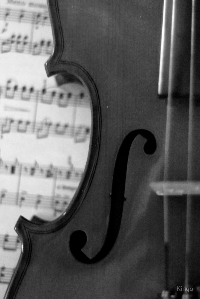 The violin by Kingo