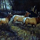 """""""Forest Royalty"""" by Susan  Bergstrom"""