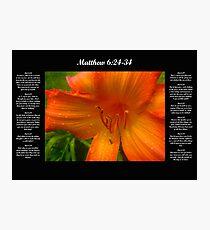 Matthew 6:24-34 Photographic Print