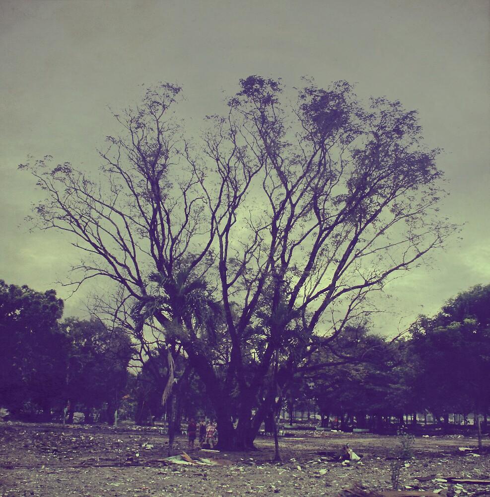 Desolation by michellardi