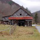 Blue Ridge Mountain Barn by Jane Best