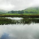 Hartsop - A Misty Day by Jamie  Green