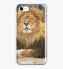 Metroparks Zoo 3 iPhone Case/Skin