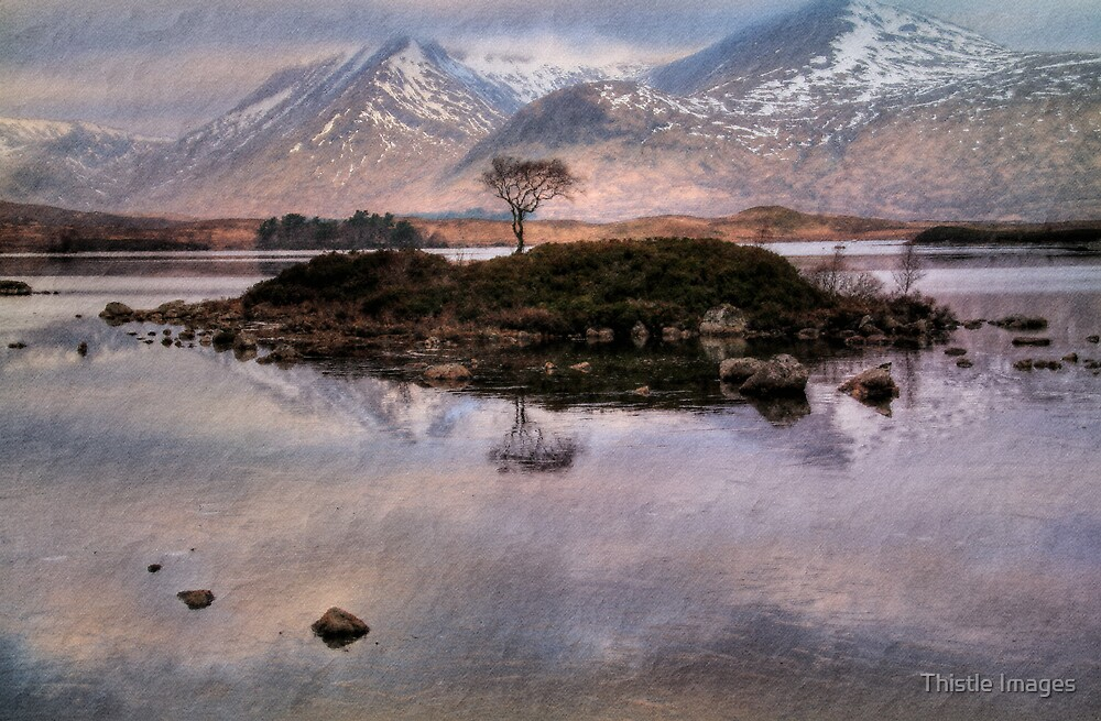 Rannoch Colour. by Thistle Images