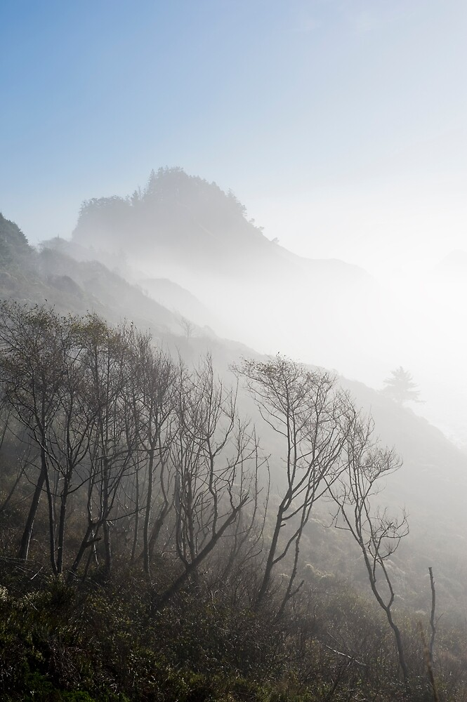 Misted Coast by Randall Scholten