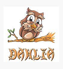 Dahlia Owl Photographic Print