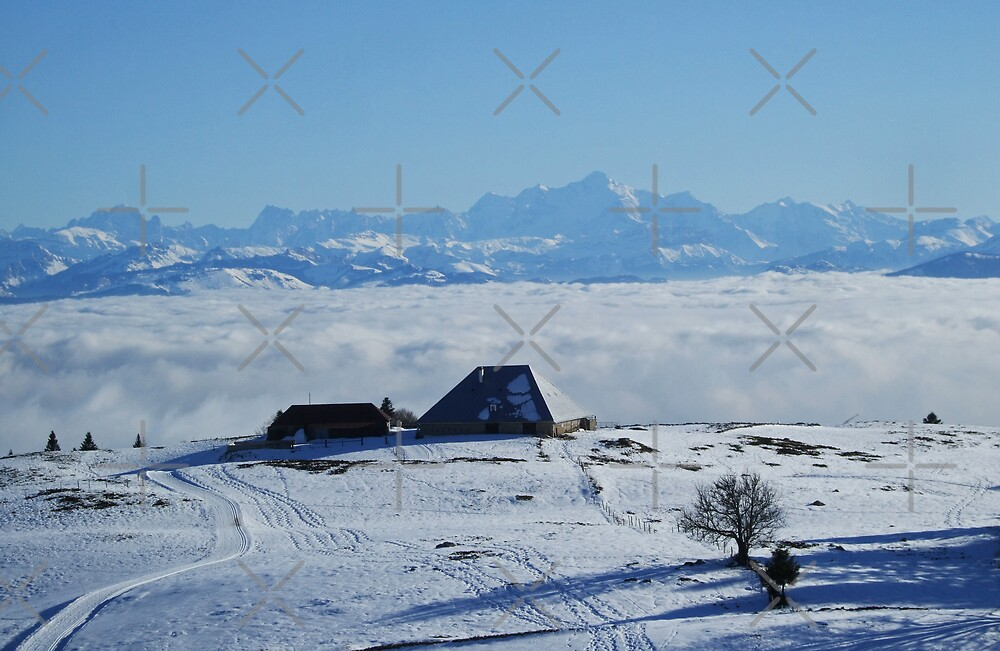 The Mont-Blanc above a sea of clouds by poupoune