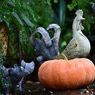 Rooster Pumpkin by Leon Heyns