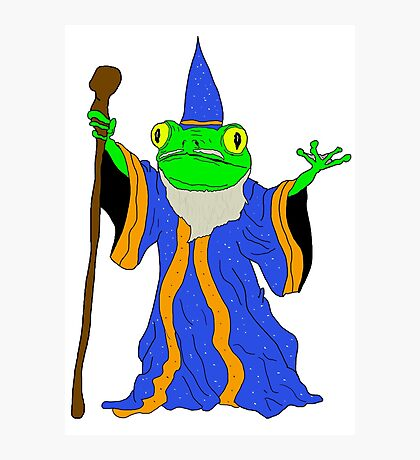 The Wizard of the Pond.  Photographic Print