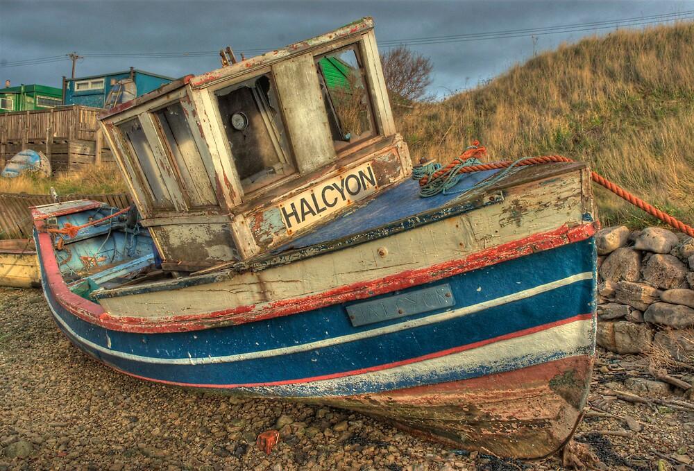Halcyon days no more by WhartonWizard