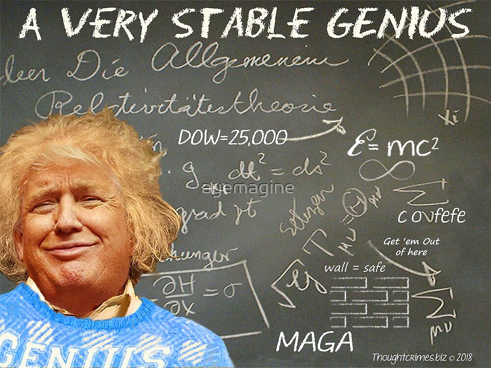 A Very Stable Genius by ayemagine