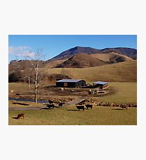 Mountain Farm Photographic Print