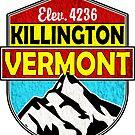 KILLINGTON VERMONT Mountain Skiing Snowboard Biking Hiking Ski Camping 2 by MyHandmadeSigns