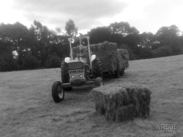 Bringing in the Hay by NRS91
