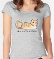 Cats Know Everything - Japanese Women's Fitted Scoop T-Shirt