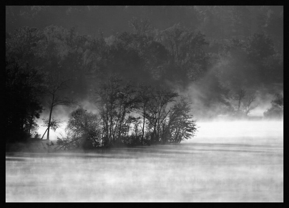 nature dreamworks by ALEX GRICHENKO