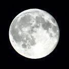 Waning Moon by chihuahuashower