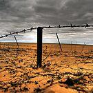Drought Breakers? by Steve Chapple