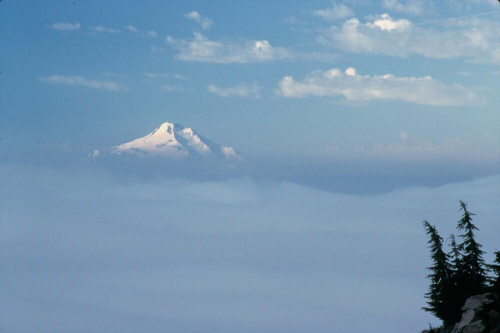 Mt. Jefferson by Ken Dietz