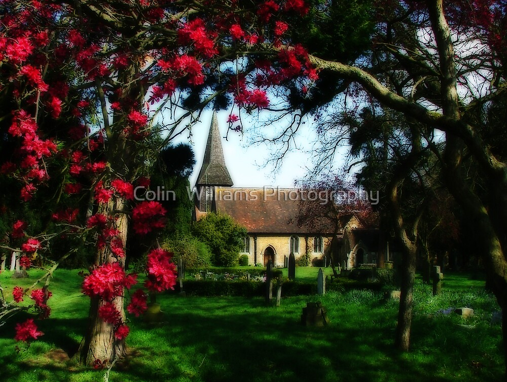 Byfleet Churchyard by Colin  Williams Photography
