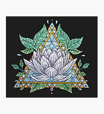 Stained Glass Lotus Illustration Photographic Print