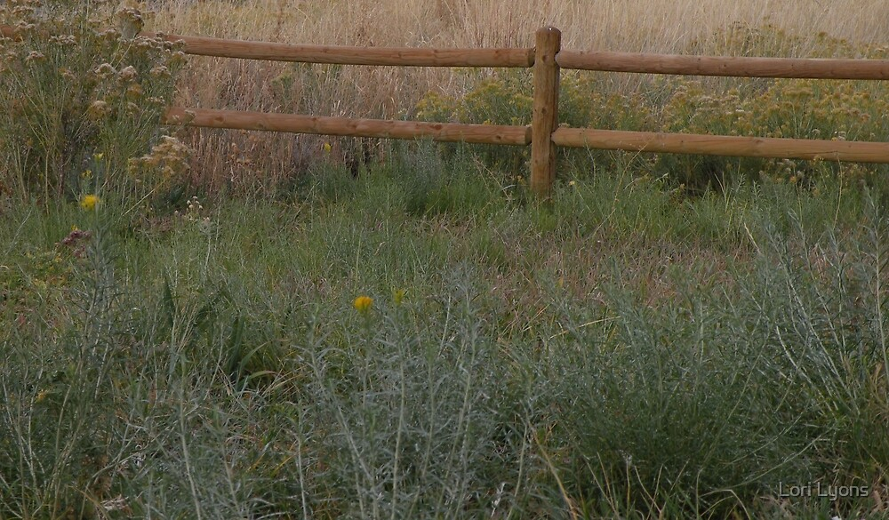 Meadow Fence by Lori Lyons