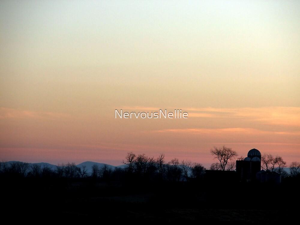 Farm Skyline by NervousNellie