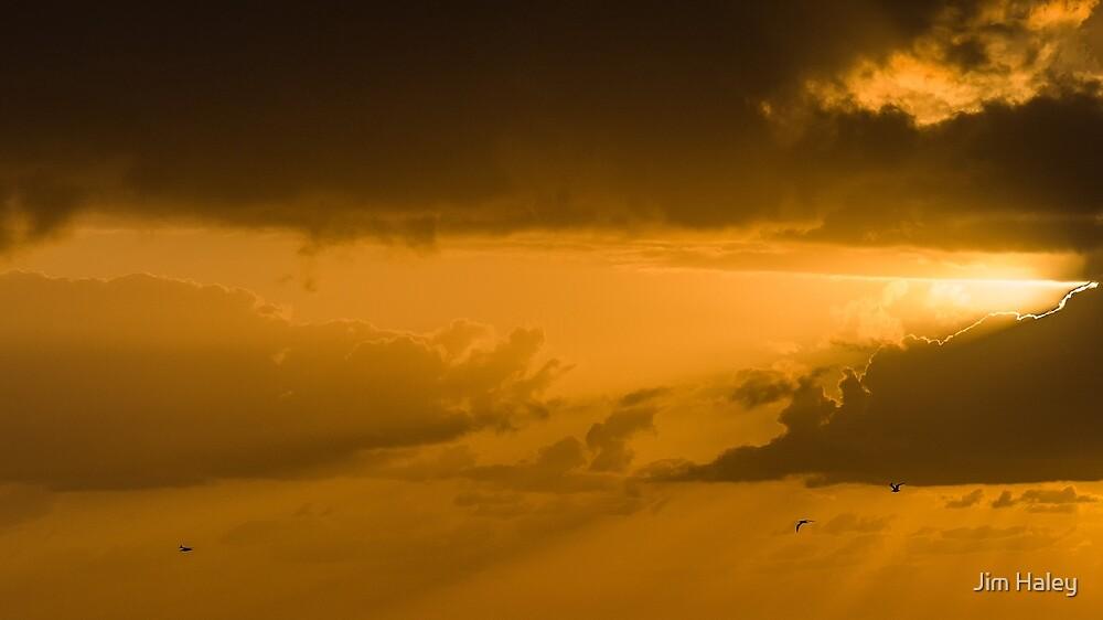 Golden Flight by Jim Haley