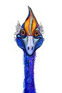"""Cassowary - """"Smile""""! by Linda Callaghan"""