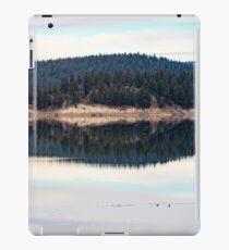Paraducks iPad Case/Skin